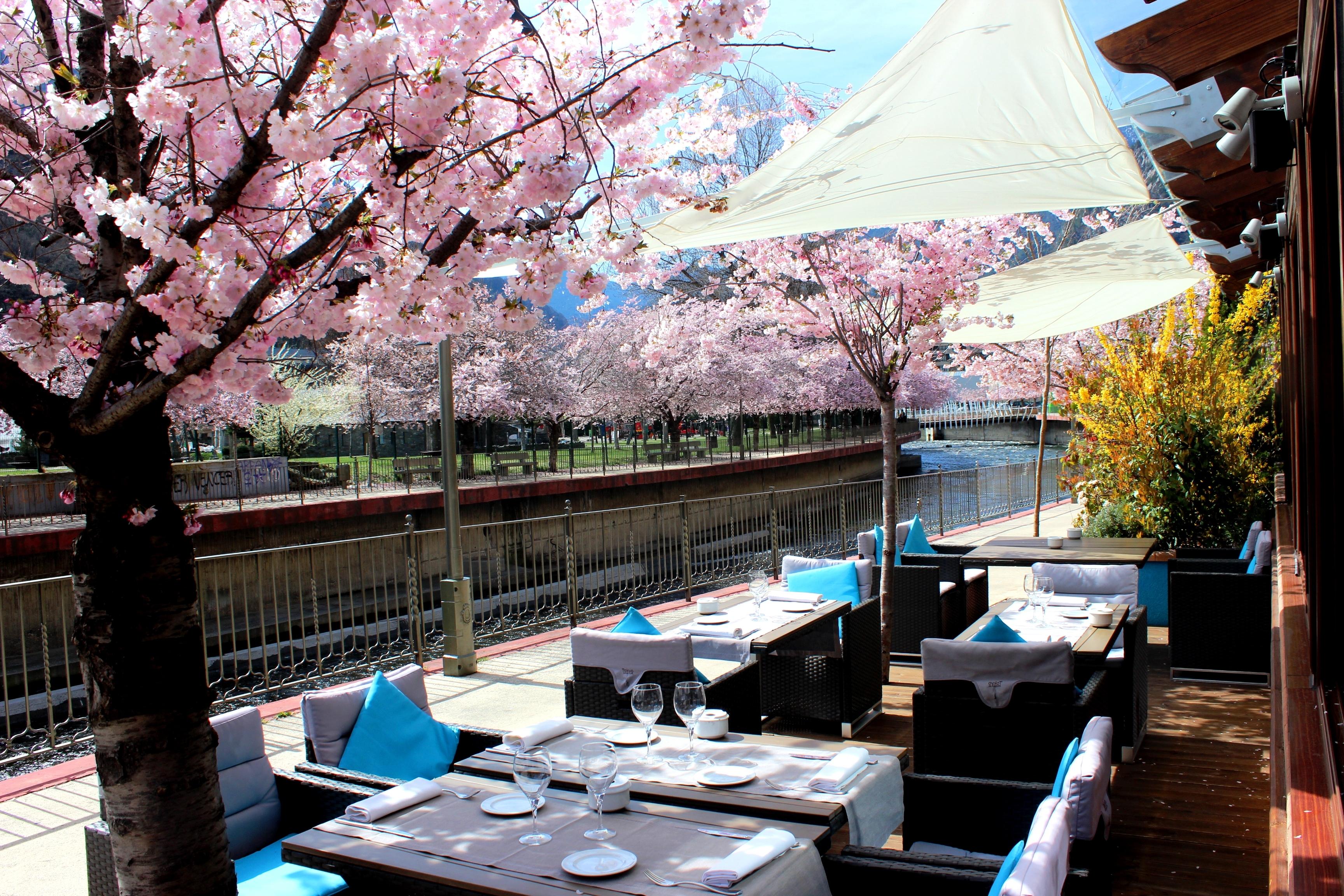 Restaurante | Hotel Acta Arthotel Andorra